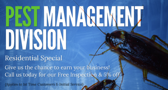 Pest Management Division: Residential Special! Give us the chance to earn your business!